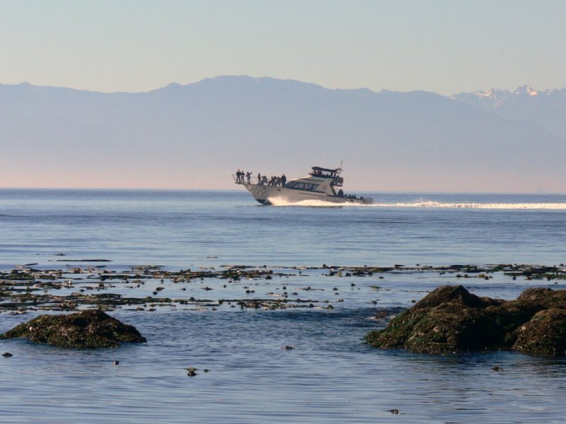 Heading out to sea on the Straits of Juan de Fuca