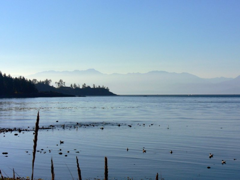 View from Whiffen Spit near Sooke (Tsou-Ke)