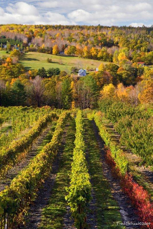 Bear River Winery