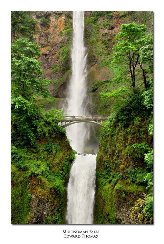 Multnomah Falls in Spring