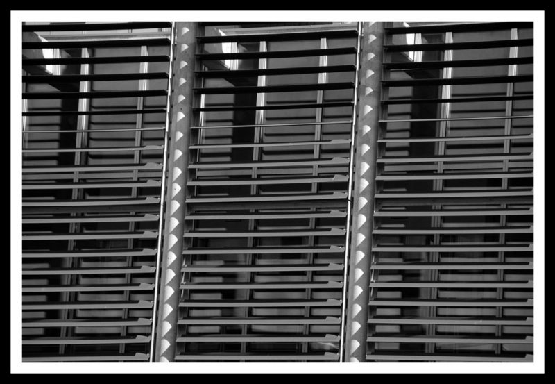 Blinds on Pappajohn_BW