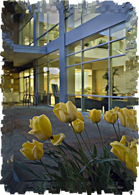 abstrac cityhall labany 2008_tn.jpg