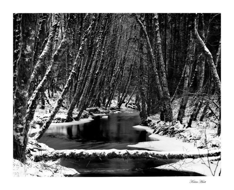 snow film 8xbw_tn.jpg