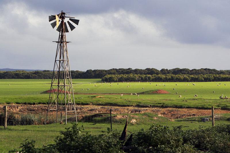 Flinders Chase Farm.jpg