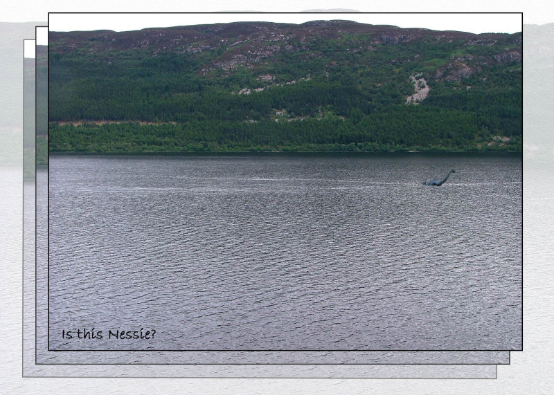 is this Nessie?