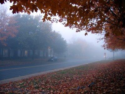 la brume dautomne
