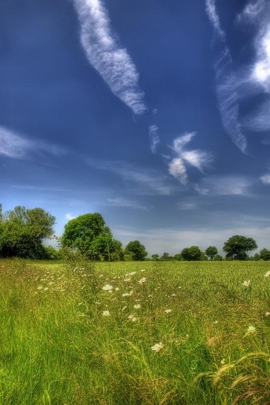 Dreamy Landscape 1