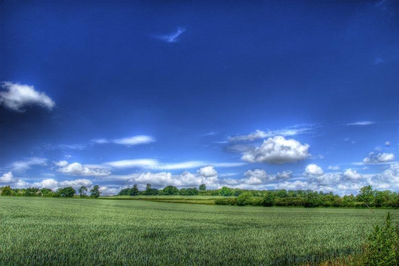 Summer Skies 2