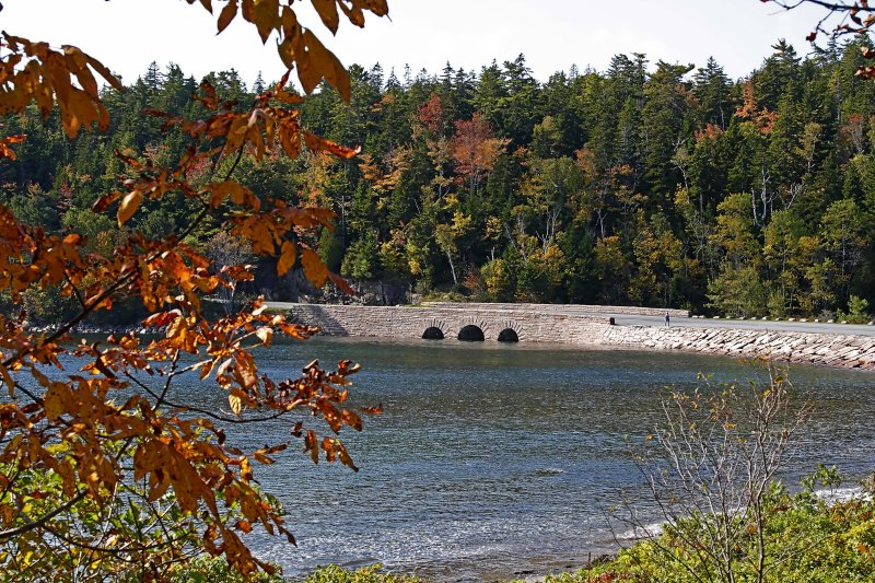 Otter Cove Bridge - Acadia NP_7295.jpg
