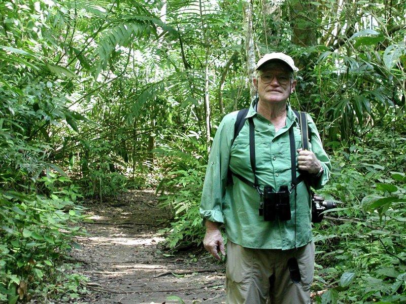 Rain Forest-Tikal.jpg