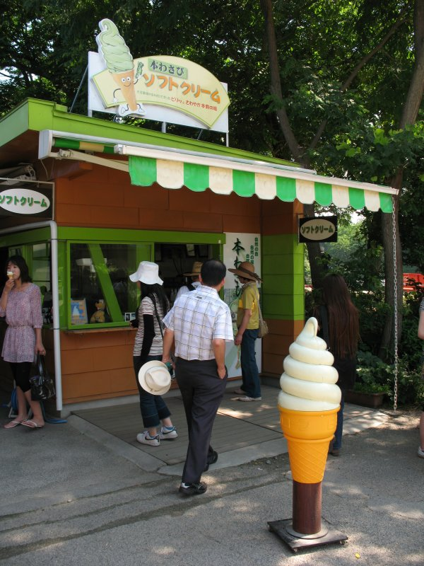 Wasabi ice cream shop