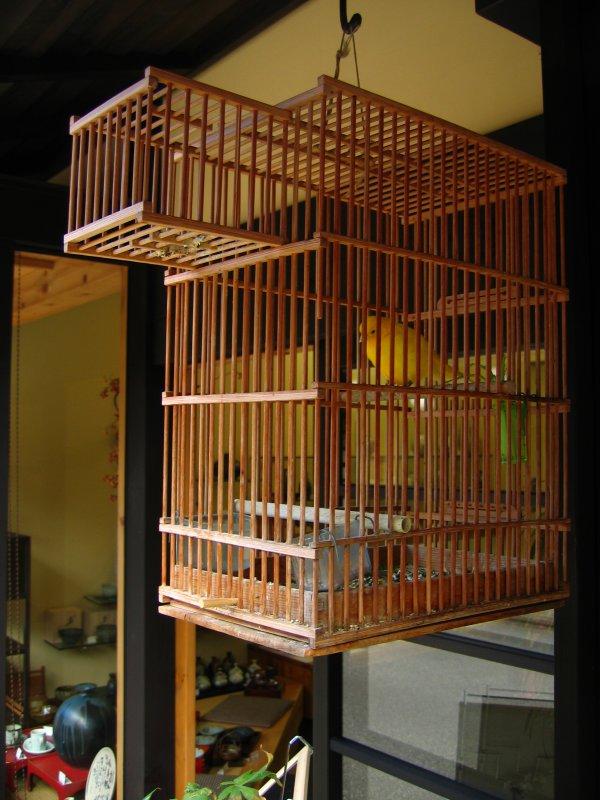 Caged canary outside a machiya