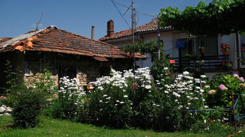 Garden and house beside Sveti Kliment