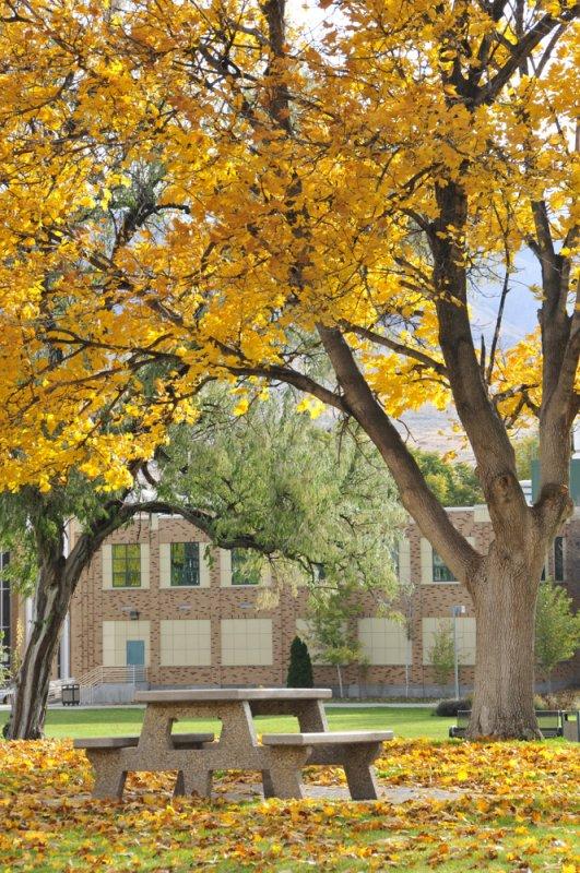 ISU Hutchinson Quadrangle autumn scene _DSC4600.jpg