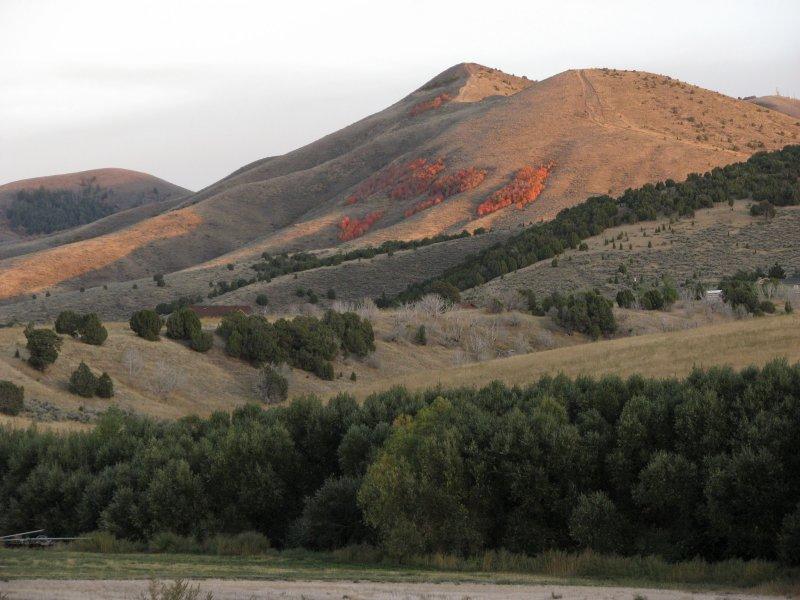 Autumn View from Pocatello Creek Road IMG_0915.jpg