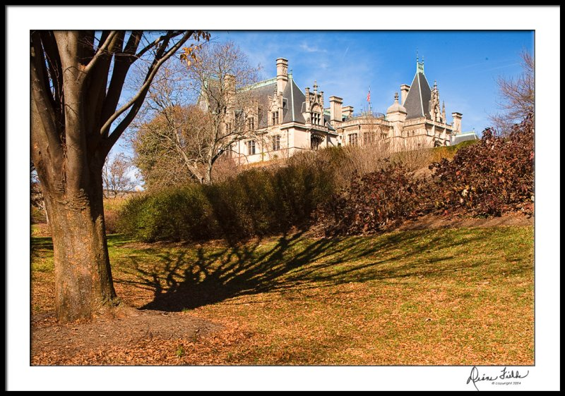 Biltmore from Amble