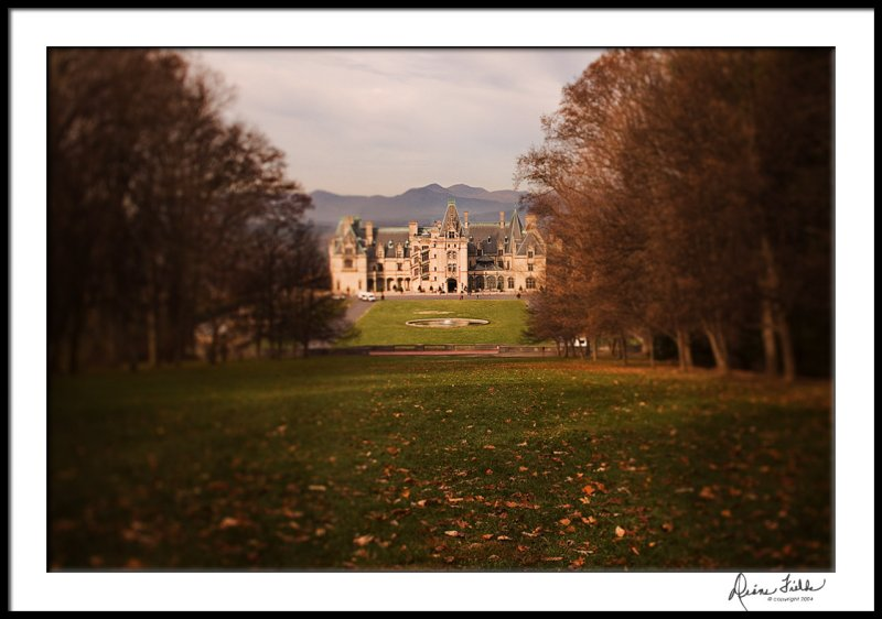 Biltmore Early Morning from the Vista