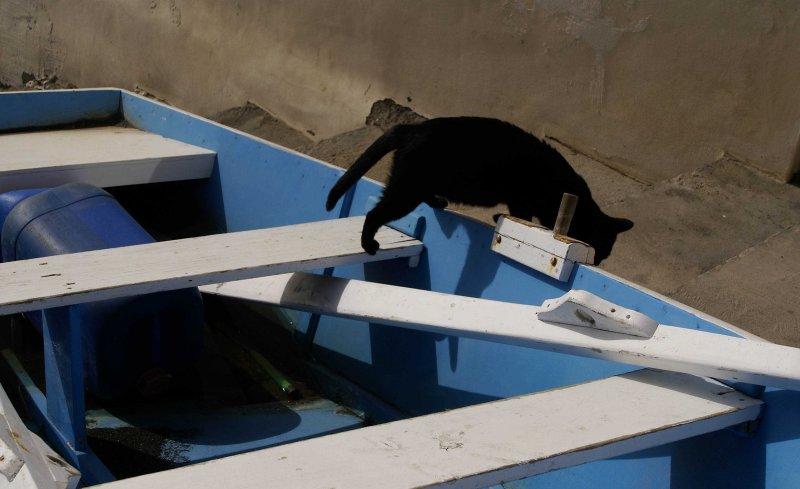 La Gomera 2007 227.jpg