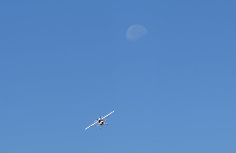 Aerobat with the moon in the background