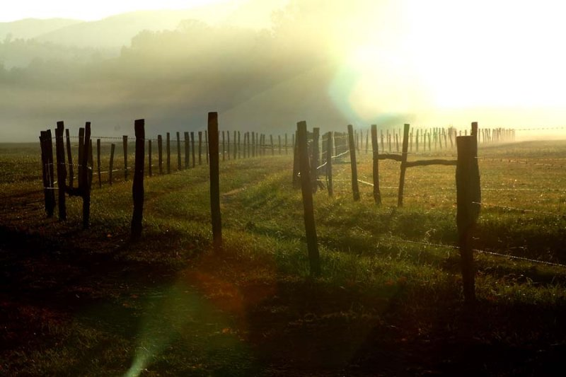 From this mornings trip to Cades Cove