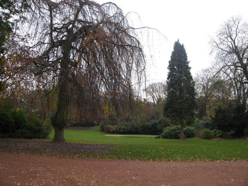 LILLE    Jardin Vauban le 28 novembre 2006 007.jpg