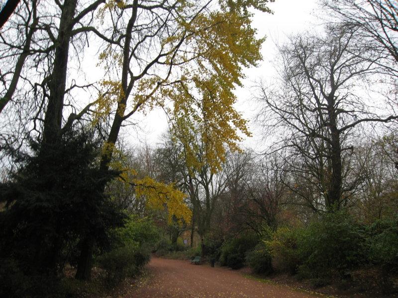 LILLE    Jardin Vauban le 28 novembre 2006 009.jpg