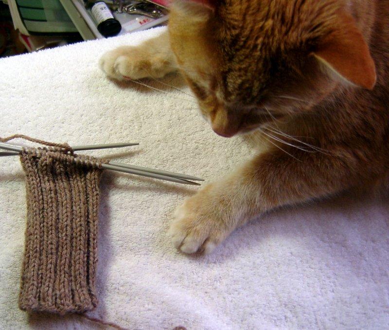 Fundamental Sock & The Peeper