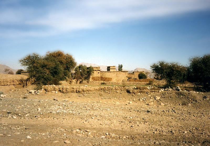 Fort and trees-FATA