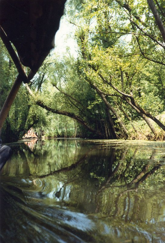 Secluded Waterways