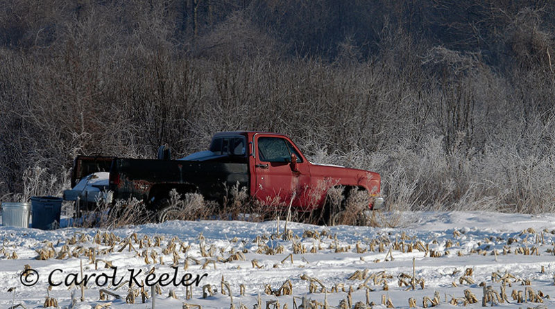 Red truck in snow