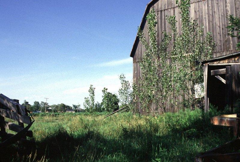 The Farm, Dunville, Ontario - 03