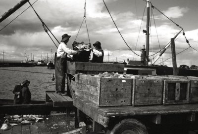 Bringing In The Catch, Winter Haven, Mass.