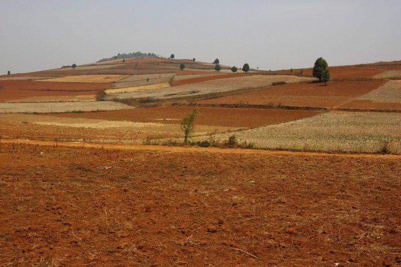 Fields near Pindaya