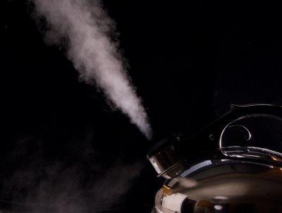 Steamed