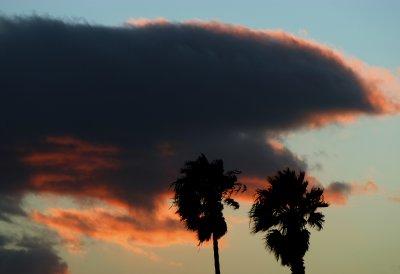 VenturaWinter2.jpg