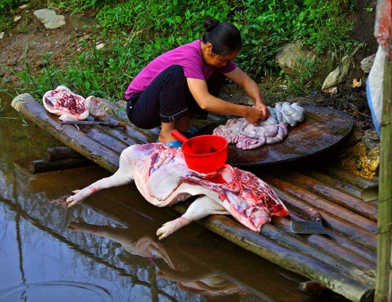 3072 Butchering pig and preparing intestines.  ***Explanation***