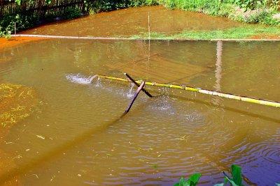 0400 Aerating a pond.