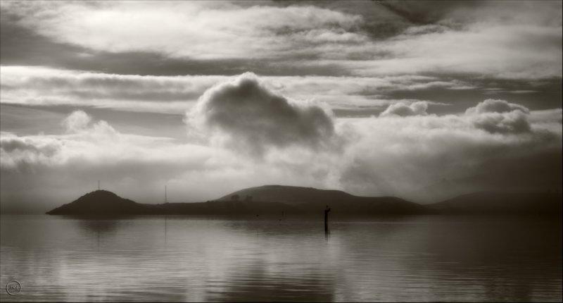 ANZAC Day Otago Harbour