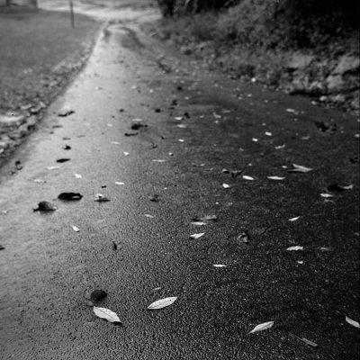 road in rain