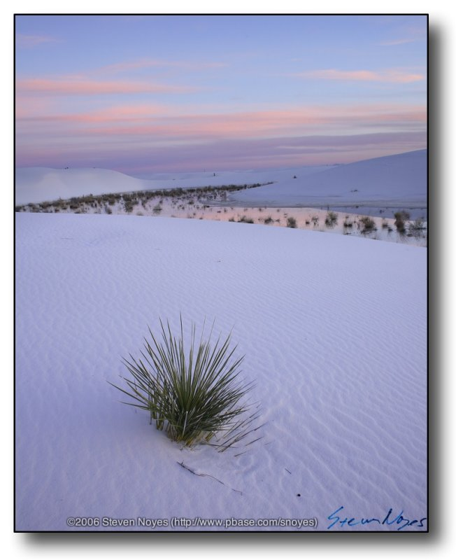 White Sands : Watching the Sunrise