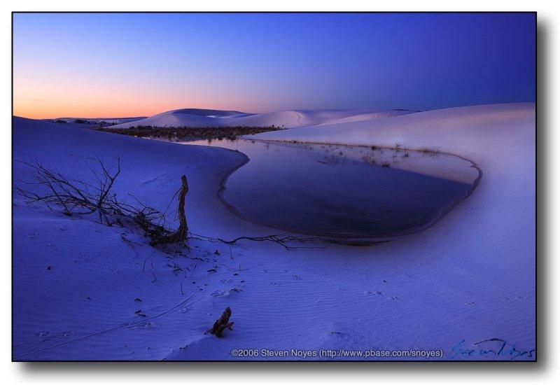 White Sands : Sand Tracks