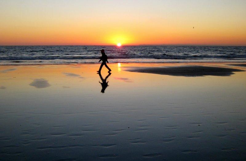 sunset stroll santa monica