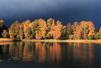 Sudden light on a dark October day, Uppland