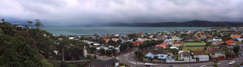 Seatoun on a Gray Day