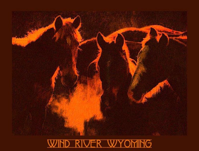 Wind River Lodge brochure
