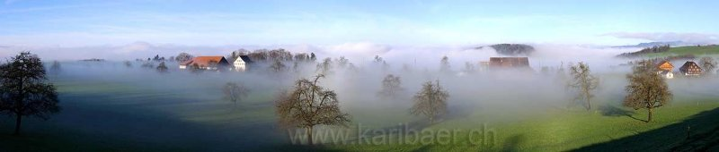 Nebel / Fog (p8270)