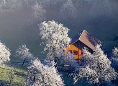 Frost (04510)