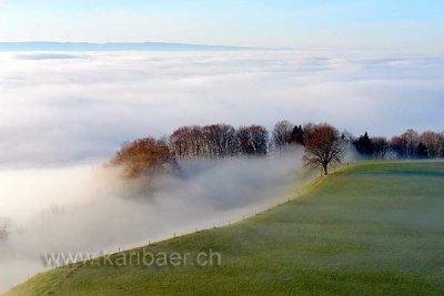 Nebelmeer (62189)