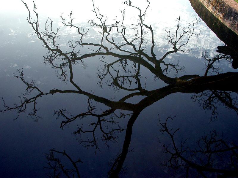 Pindaya Lake reflection.JPG