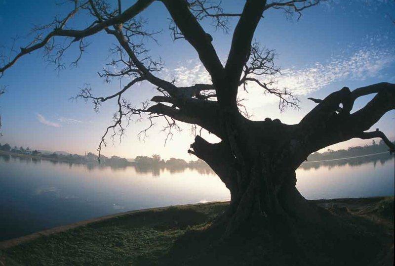 Pindaya-Lake.jpg